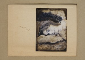 Musing in the meadow, Margje Bijl, Sipco Feenstra, photograph, drawing, ink, Jane Morris